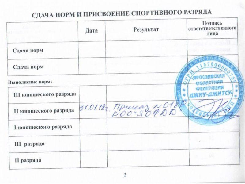 3_stranichka_belyanin