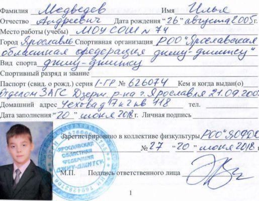 2_stranichka_medvedev_ilya