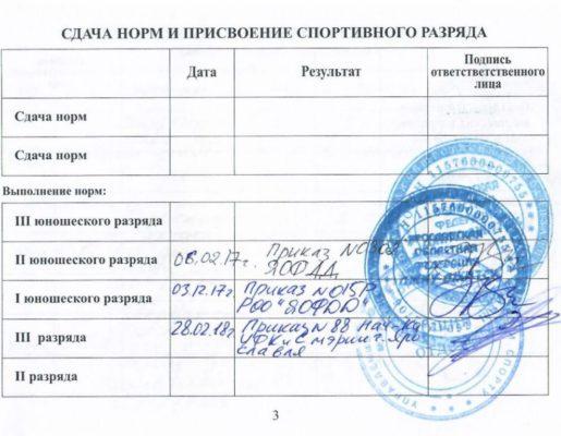 3_stranichka_brovkin_aleksandr