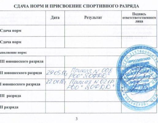 3_stranichka_dunaev