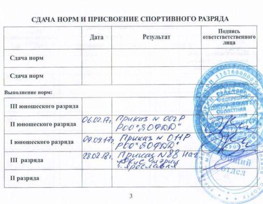 3_stranichka_medvedev_ilya