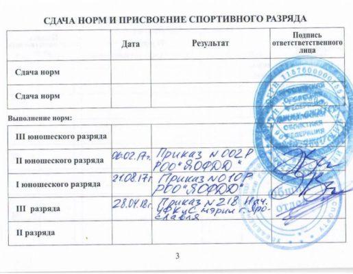 3_stranichka_okrujnov